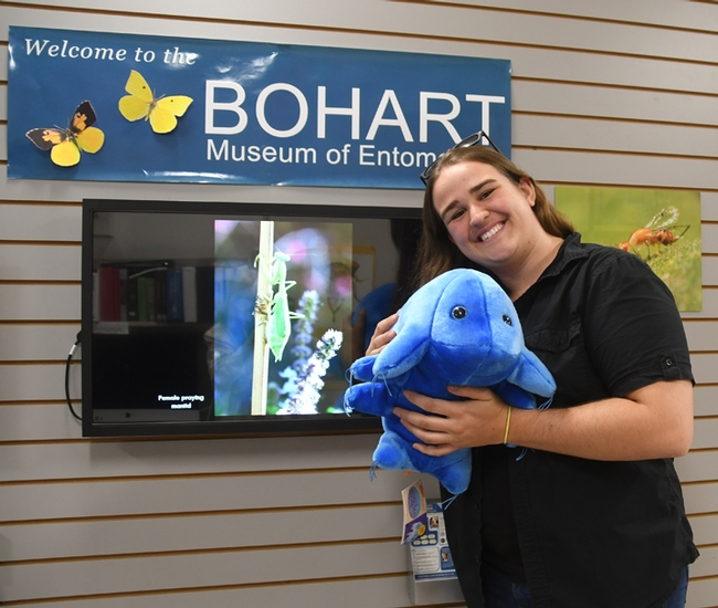 UC Davis student and Bohart associate Emma Cluff holds a plush water bear from the Bohart Museum's gift shop. It costs about $30, plus tax, will all proceeds to finance educational programs at the Bohart. (Photo by Kathy Keatley Garvey)