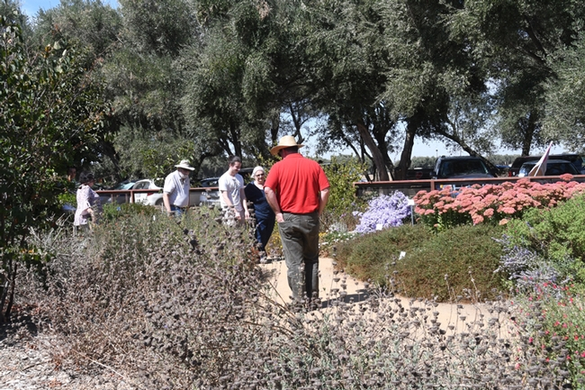 Visitors check out the flowers at the Häagen-Dazs Honey Bee Haven. (Photo by Kathy Keatley Garvey)