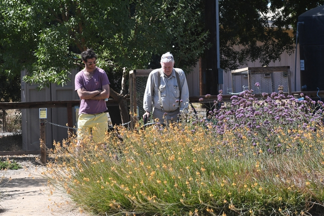 Photographer Allan Jones (right) talks about the bees he's photographed in the Häagen-Dazs Honey Bee Haven. (Photo by Kathy Keatley Garvey)