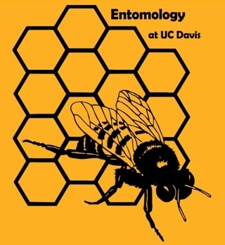 One of the favorite bee t-shirts was designed by Danny Klittich, who holds a doctorate in entomology from UC Davis and now works as a California central coast agronomist.