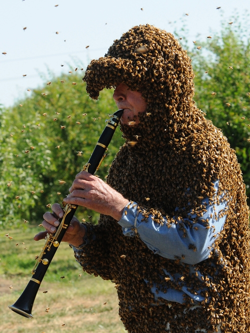 Musician and Bee Man