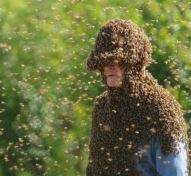 'Bee Man