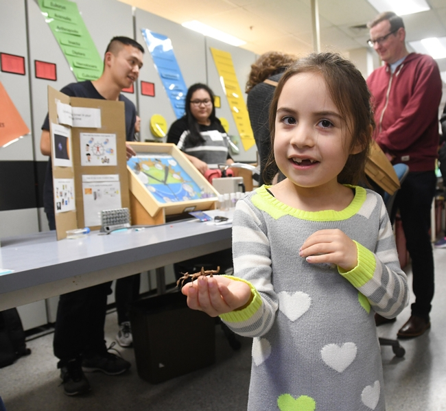 Kira Olmos smiles as she holds a smaller stick insect at the Bohart Museum. In back are UC Davis student fly researchers Yao Cai, graduate student, and Cindy Truong, undergraduate student, of the Joanna Chiu lab. (Photo by Kathy Keatley Garvey)
