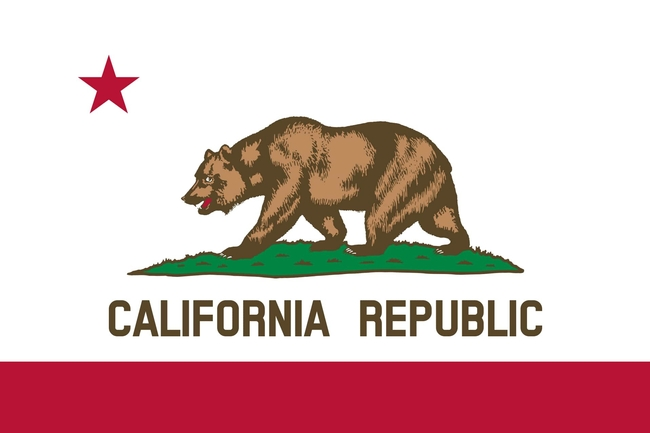The California Bear Flag features a grizzly bear, while the Bohart Republic flag features another bear, a water bear. The California State Legislature adopted the  official version of the Bear Flag in 1911 in a law signed by then Gov. Hiram Johnson in 1911.