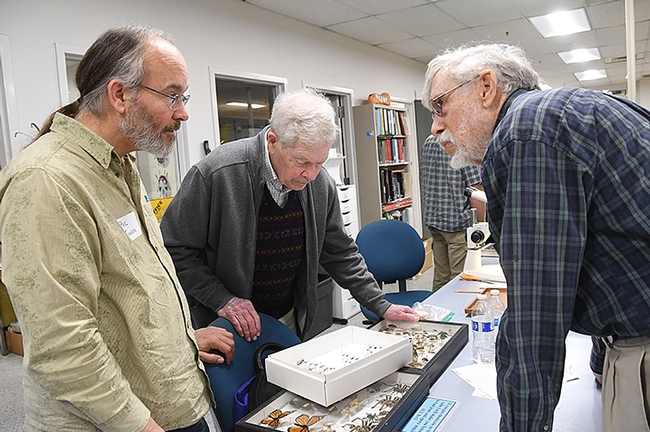 Lepidopterists (from left) Paul Johnson, Jerry Powell and Bill Patterson discuss butterfly species. (Photo by Kathy Keatley Garvey)