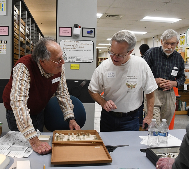 John Lane (left) and Larry Allen discuss specimens. At far right is Bill Patterson. (Photo by Kathy Keatley Garvey)