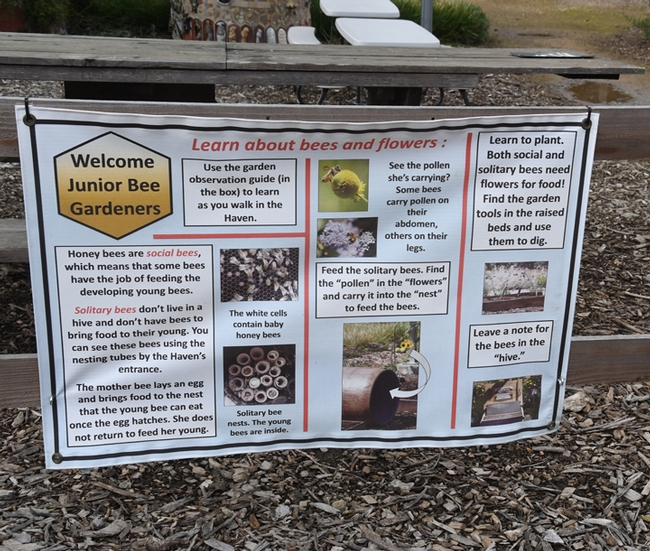 This sign greets Junior Bee Gardeners at the Häagen-Dazs Honey Bee Haven on Bee Biology Road, UC Davis. (Photo by Kathy Keatley Garvey)