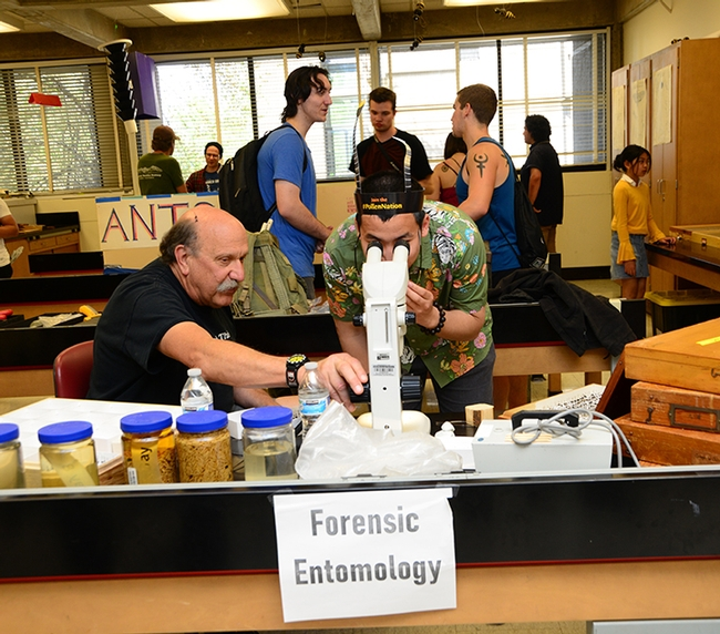 Forensic entomologist Robert Kimsey (left) held forth at the forensic entomology table in Briggs Hall during the 2019 UC Davis Picnic Day. He recently won a College of Agricultural and Environmental Sciences' advising award. (Photo by Kathy Keatley Garvey)