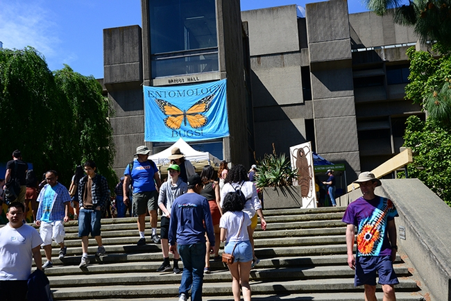 Briggs Hall, home of the UC Davis Department of Entomology and Nematology, was a big draw at the 105th annual UC Davis Picnic Day. (Photo by Kathy Keatley Garvey)