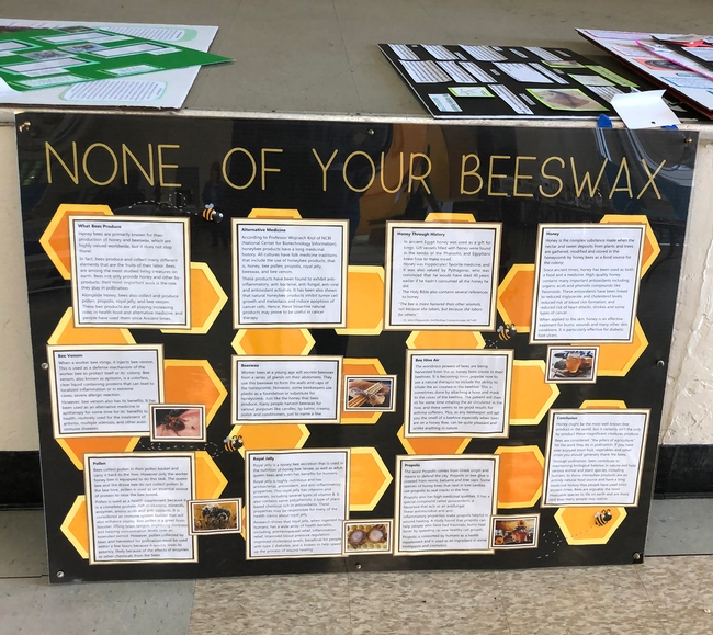 Dixon 4-H'er Ryan Anenson of the Tremont 4-H Club created this award-winning educational display,