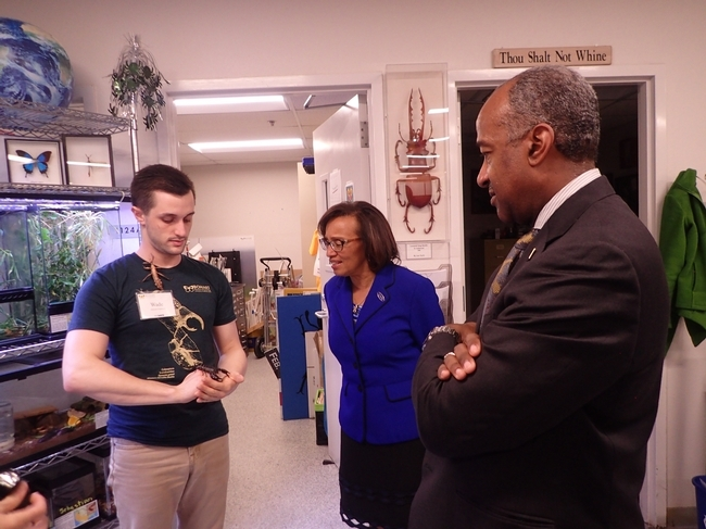 Bohart associate and entomology  student Wade Spencer (left) shows Chancellor Gary May and Dean Helene Dillard a stick insect from the Bohart Museum of Entomology's petting zoo. (Photo by Kathy Keatley Garvey)