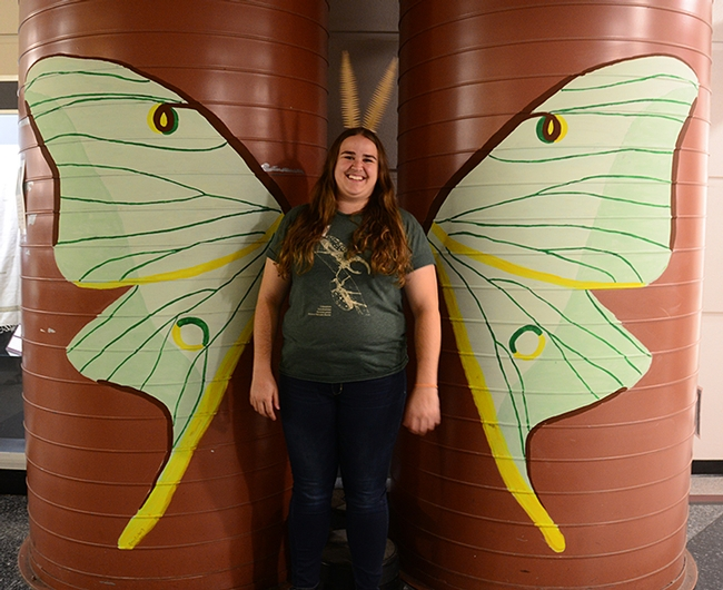 Bohart associate Emma Cluff displays the giant luna moth that she and Kelly Davies created. (Photo by Kathy Keatley Garvey)