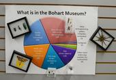 What's in the Bohart Museum of Entomology? A sign tells all. (Photo by Kathy Keatley Garvey)