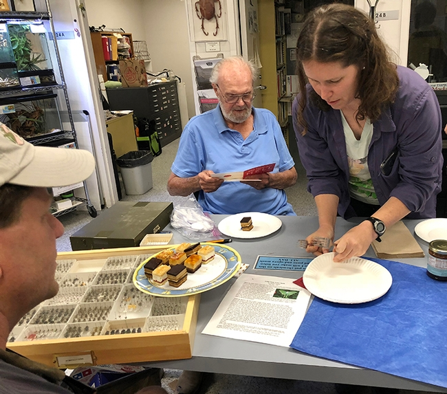 Honoree Robbin Thorp reads a birthday card at a celebration in 2018 at the Bohart Museum of Entomology. At right is Tabatha Yang, Bohart Museum education and outreach coordinator. (Photo by Kathy Keatley Garvey)