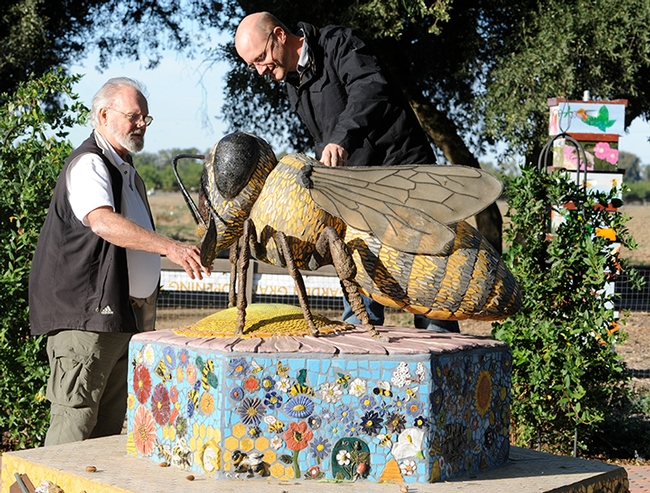 Robbin Thorp (left), legendary authority on bees, shows UC Davis alumnus Alex Wild the