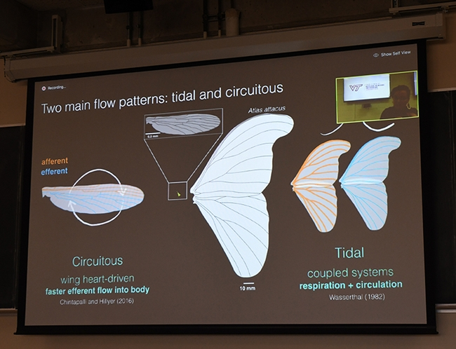 This was the presentation that those watching the UC Davis Department of Entomology and Nematology's