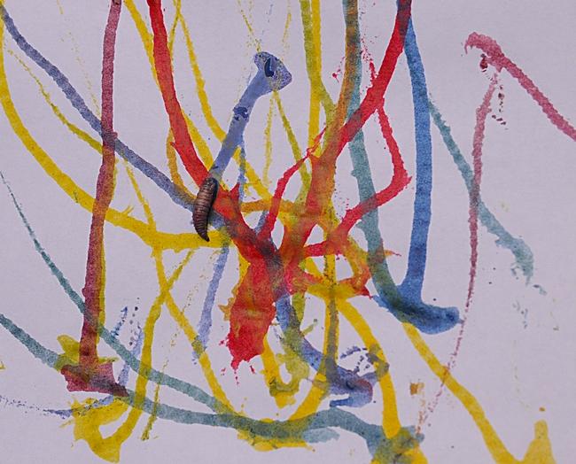 This work, Maggot Art, is by entomologist/artist Diane Ullman. (Photo by Kathy Keatley Garvey)