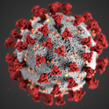 This is the virus that causes COVID-19. A UC Davis-based public awareness webinar on COVID-19 will take place at 1:30 p.m., Thursday, April 23 on YouTube.