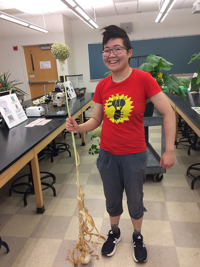 Ivana Li poses in her lab with a garlic plant. (Photo by Rachel Fazzi)