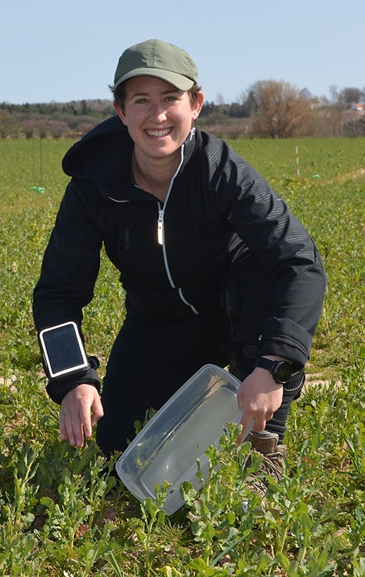 Emily Bick, who received her doctorate in entomology from UC Davis in 2019, is now a postdoctoral researcher at the University of Copenhagen, Denmark