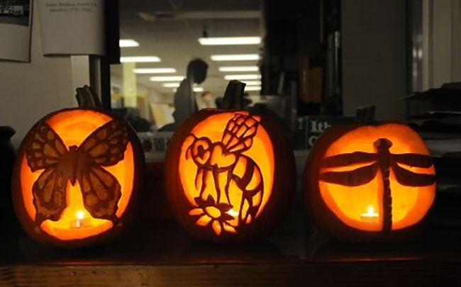 These three jack o'lanterns represent a butterfly, bee and dragonfly. They were among Halloween decorations at the Bohart Museum of Entomology's annual Halloween parties. (Photo by Kathy Keatley Garvey)