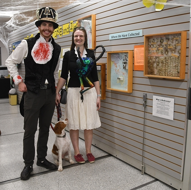 UC Davis entomology doctoral student Charlotte Herbert Alberts and husband George are a big part of the Bohart Museum Halloween parties. Both are artists as well. Charlotte studies with major professor Lynn Kimsey, director of the Bohart Museum of Entomology. With the couple: their Brittany spaniel, Westley. (Photo by Kathy Keatley Garvey)