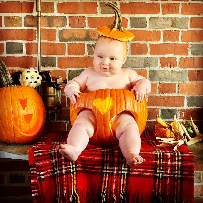 Griffin, infant son of George and Charlotte Alberts, wasn't born in time for the 2019 Bohart Museum of Entomology Halloween party, but he's not missing out this year in family celebrations. He was born in April 2020. (Photo courtesy of George and Charlotte Alberts)