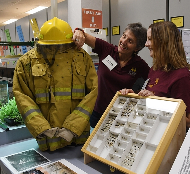 UC Davis doctoral student Crystal Homicz (right) participating in a forest entomology open house at the Bohart Museum of Entomology. With her is Professor Lynn Kimsey, director of the Bohart. (Photo by Kathy Keatley Garvey)