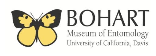 Bohart logo