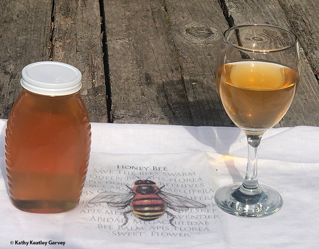 Participants in the California Master Beekeeper Program's online introduction to mead will learn about honey and mead. (Photo by Kathy Keatley Garvey)