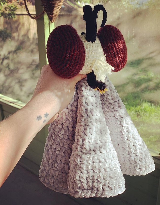 This crocheted robber fly, the work of former UC Davis doctoral student Rebecca Godwin, holds a special place in Griffin Albert's crib. He may be he only baby with a crocheted robber fly toy in his crib.