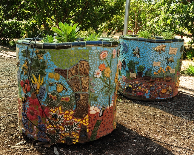 These planters grace the UC Davis Department of Entomology and Nematology's bee garden, the Häagen-Dazs Honey Bee Haven, on Bee Biology Road. (Photo by Kathy Keatley Garvey)