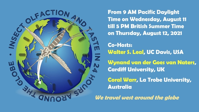 """The free international symposium,  """"Insect Olfaction and Taste in 24 Hours Around the Globe,"""" begins at 9 a.m, Pacific Daylight Time (PDT), Wednesday, Aug. 11."""