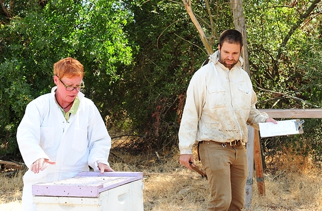 With their veils off in this portion of the CAMBP practical test, examiner Charley Nye watches Cheryl Veretto finish the last steps of her test. (Photo by Kathy Keatley Garvey)