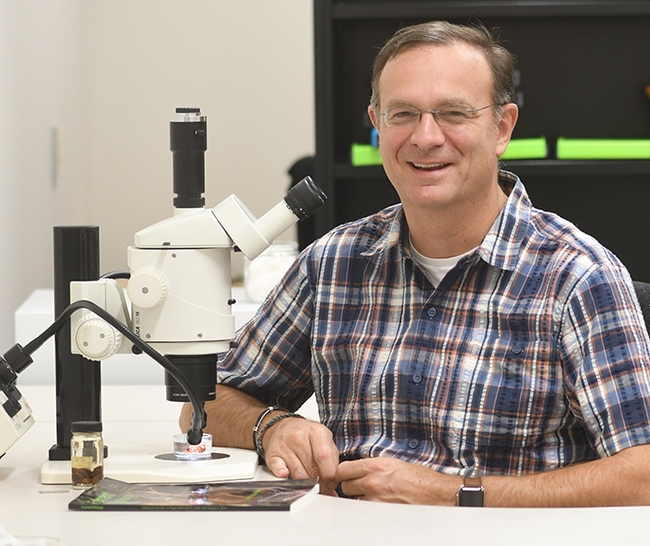 Jason Bond,professor of entomology and the Evert and Marion Schlinger endowed chair in insect systematics, UC Davis Department of Entomology and Nematology, is a newly selected co-editor-in-chief of the journal Insect Systematics and Diversity (ISD), published by the Entomological Society of America (ESA). (Photo by Kathy Keatley Garvey)