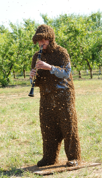 Norm Gary is both a professional bee wrangler and a musician. (Photo by Kathy Keatley Garvey)