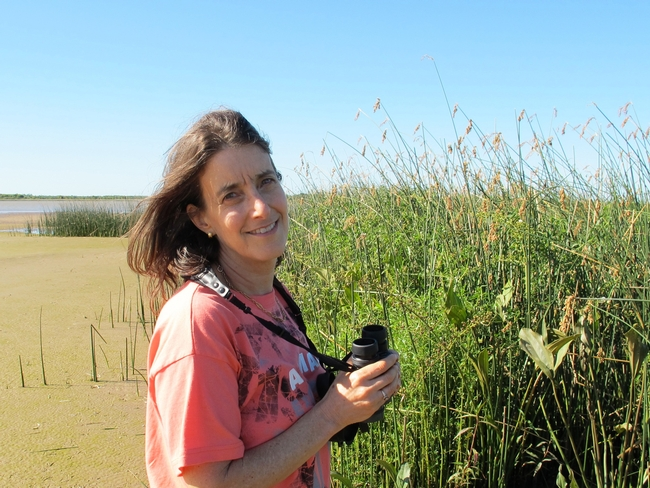 Biologist Martha Weiss of Georgetown University studies Lepidopteran learning and memory.