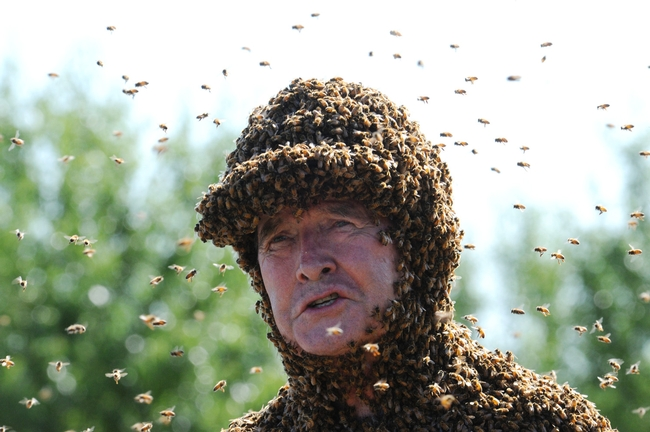 Apiculturist/bee wrangler Norman Gary, emeritus professor of entomology at UC Davis. (Photo by Kathy Keatley Garvey)