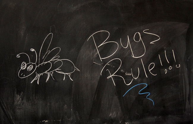 This was scrawled on a Briggs Hall blackboard during an annual UC Davis Picnic Day. (Photo by Kathy Keatley Garvey)