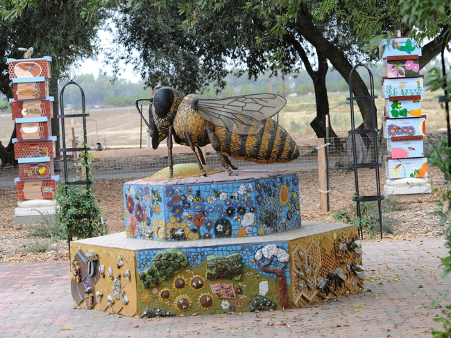 The colorful bee boxes (background) were shown on the TV program. (Photo by Kathy Keatley Garvey)