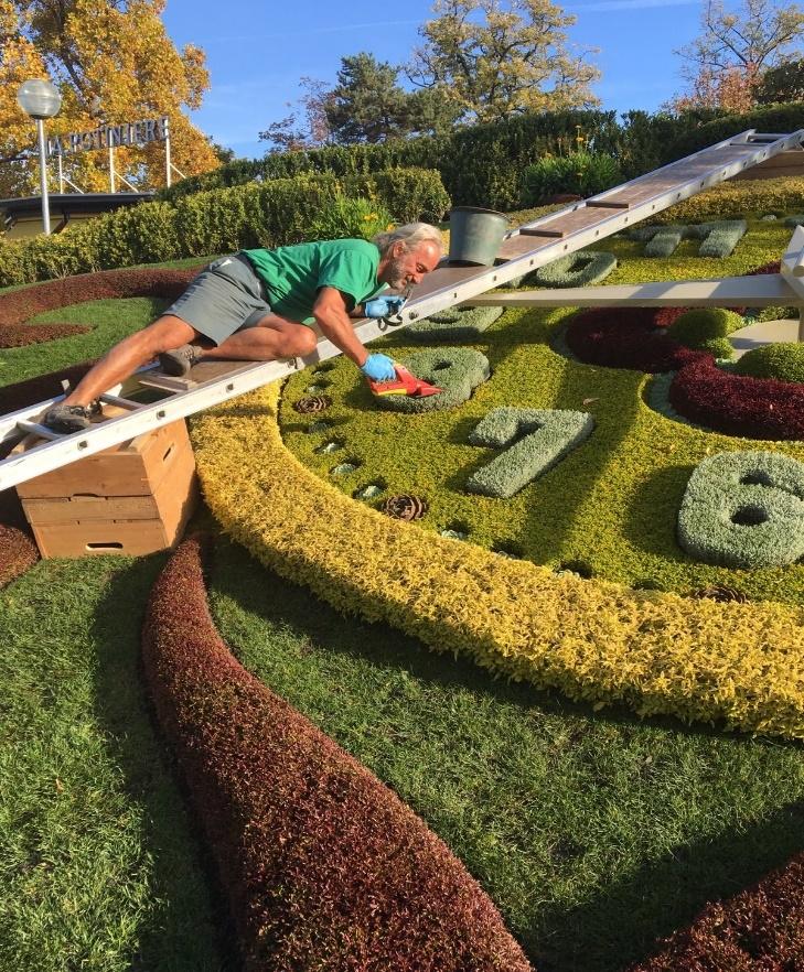 Geneva S Flower Clock In Le Jardin Anglais The Backyard Gardener
