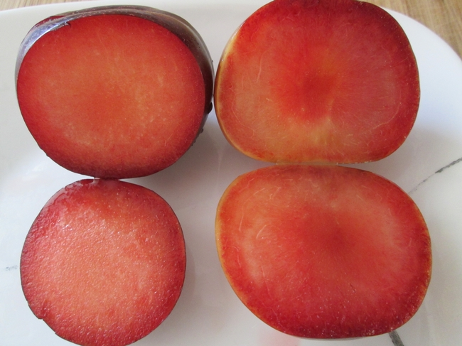 Flesh of typical pluot