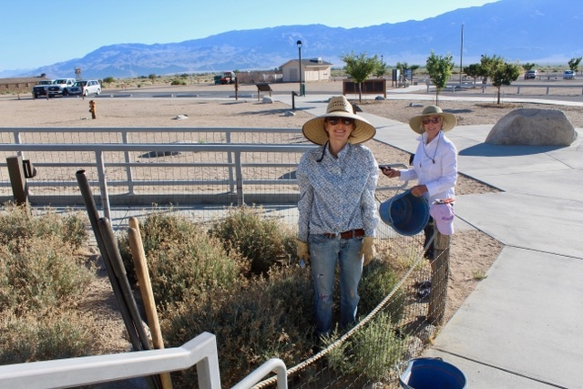 Ariel Bohar and Joanne Parsons tending the guayule patch.