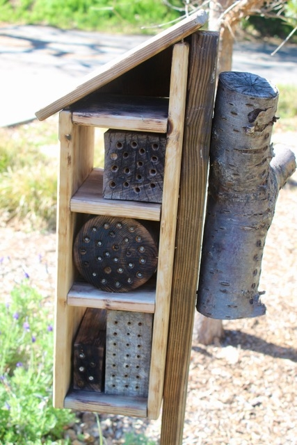 A small structure with holes for bees.