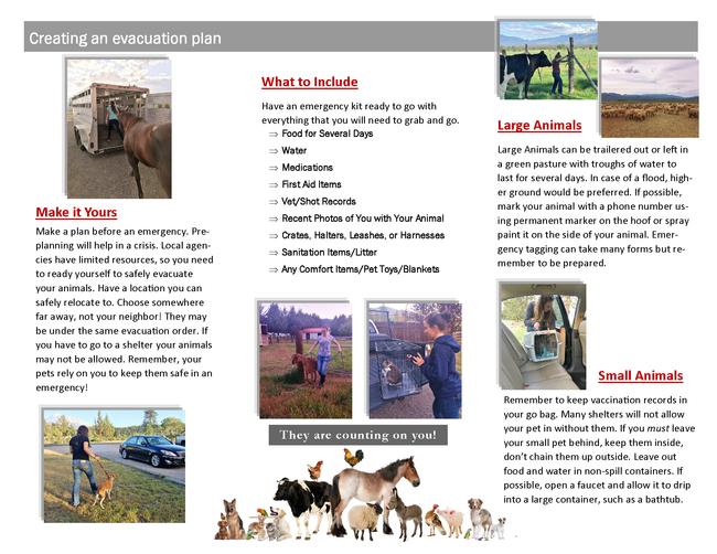 PEEP Brochure Page 2