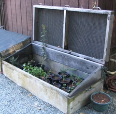 a coldframe for starting seeds