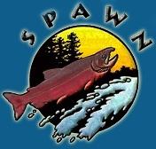 SPAWN logo color