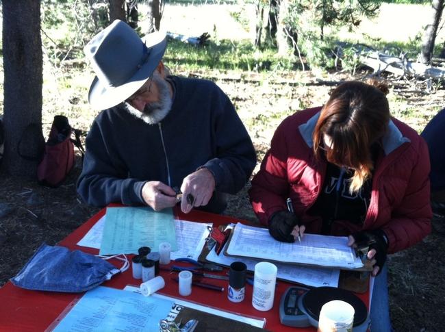 Sagehen Field Station Naturalists learn about bird banding