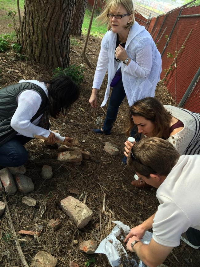 Dominguez Rancho Adobe Naturalists