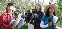 Naturalists from Grassroots Ecology take phenology data. for California Naturalist Blog